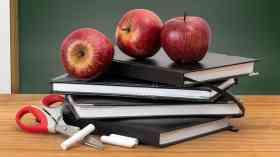 Calls for discrimination against citizenship teachers to end