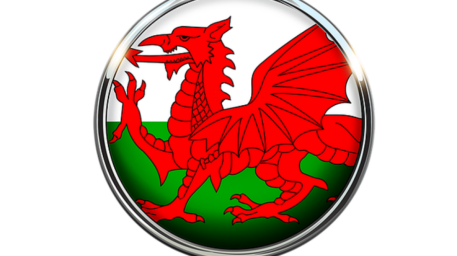 Wales passes Additional Learning Needs and Education Tribunal Bill